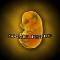 Solar Fetus