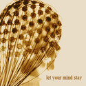 let your mind stay by Kevin Bud Jones