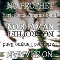 No Shaman No Prophet No Shaman by Farfetched Tangmo Band