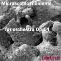 Microscopic moments 'A dream' by Lalo Oceja