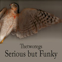 Serious but Funky by thetworegs