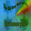 The Old Grey Wolf Ltd Co - Metamorphis by The Old Grey Wolf Ltd Co