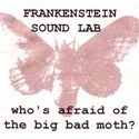 WHO'S AFRAID OF THE BIG BAD MOTH ? by Frankenstein Sound Lab