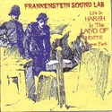 LIFE IS HARSH IN THE LAND OF GHOSTS THEME PARK by Frankenstein Sound Lab