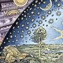 Cosmos large