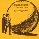 More Songs About Elves & Flowers by Frankenstein Sound Lab