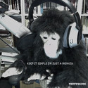 Keep it simple i'm just a Monkey by thetworegs