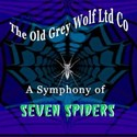 A Symphony of Seven Spiders by The Old Grey Wolf Ltd Co