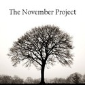 The November Project's avatar