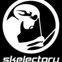 skelectory's avatar