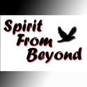 Spirit From Beyond's avatar
