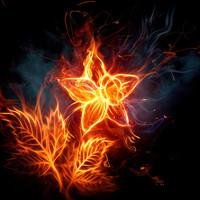 129439 xcitefun fiery flowers album
