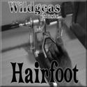Hairfoot by Wildgeas Music