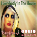 Boysexual (QUBIQ Euro Remixes) by eithband