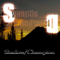 Shadow/Champion by Synaptic Disturbance