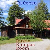 Rustic Rumpus Room by Dweeb