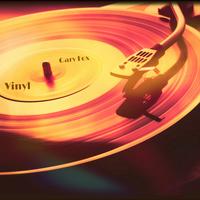 Vinyl by Gary Fox