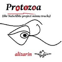 Protozoa by alizarin