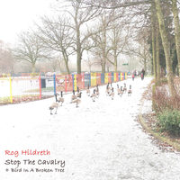Stop The Cavalry by Rog Hildreth